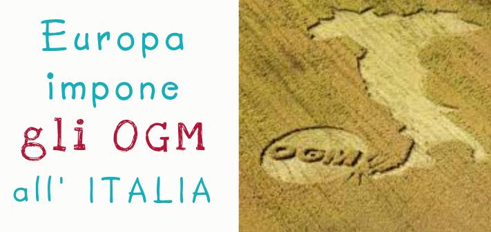 L'Europa impone gli OGM all'Italia